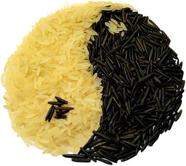 rice-74314__340