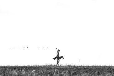 dancer-871720__340